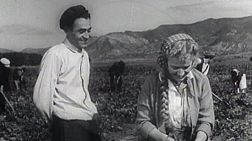 17 January 1912, was born the great painter Mandi Koçi