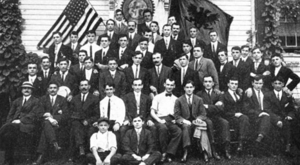 7 Nëntor 1915, Komiteti amerikano-shqiptar